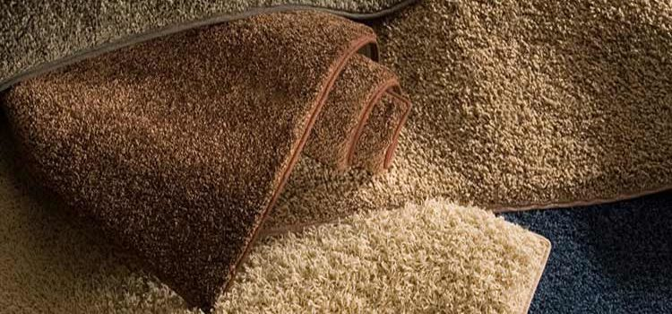 What Type of Carpet Should You Choose?