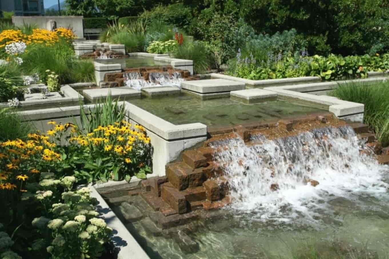 Moving Towards a Lavish Backyard – Tips & Tricks