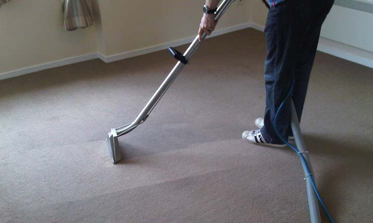 Why Your Carpet May Need Dry Shampooing