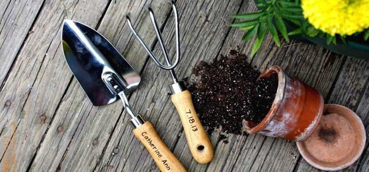 Basic Tools for Gardening
