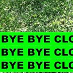 Say Goodbye to Clover in Your Lawn with These Tips